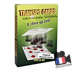 Transpo Cards (Optical Wallet)
