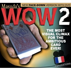 WOW 2 - Face Down (Version DOS)