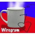 Wiregram (Fil de fer à révélation)