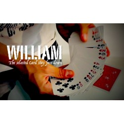 William (TOUR GRATUIT)